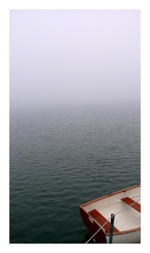 Fog_5