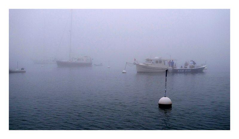 Fog_3
