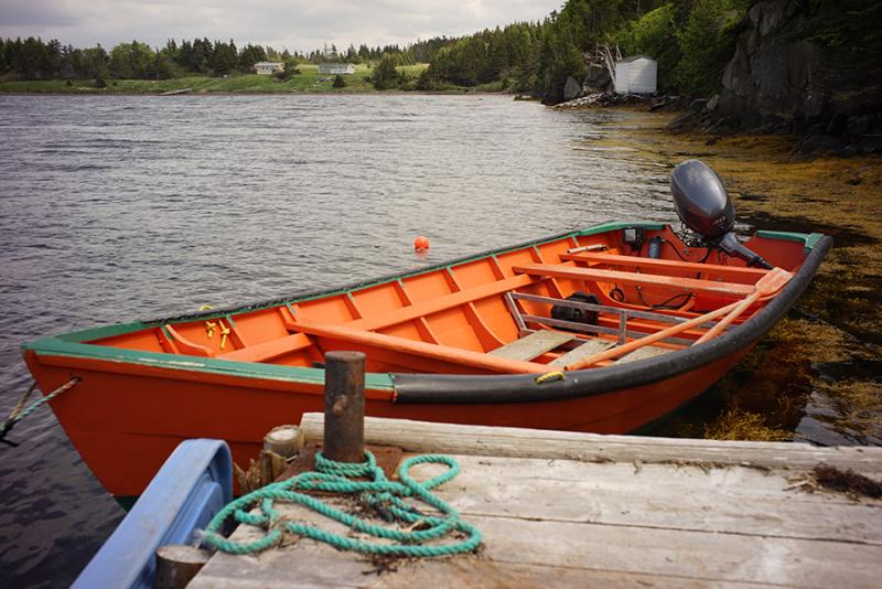 Newfoundland_5