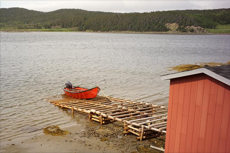 Newfoundland_6